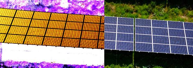 PV Module im Solarpark