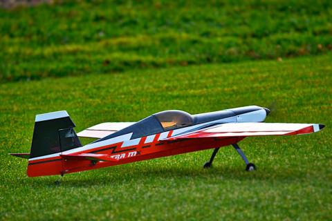 RC Segelflugzeug auf Wiese