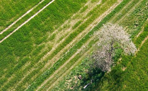 scharfe Satelittenbilder per Drohne